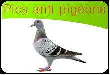 Pics anti pigeons infos utiles sur les pigeons et for Pics anti pigeons